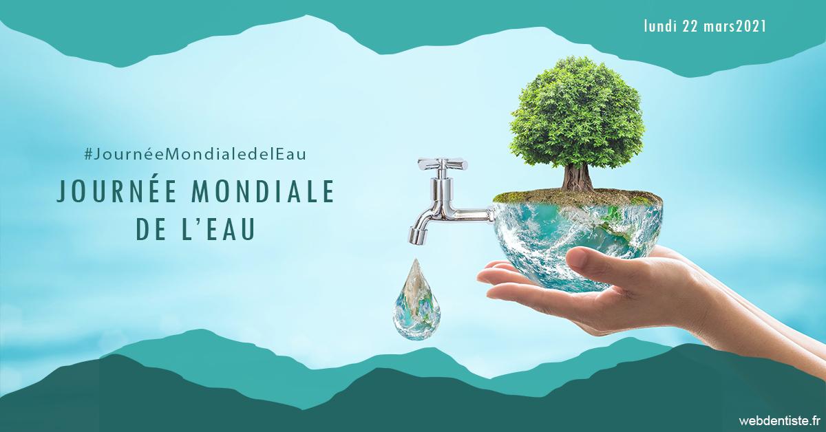 https://dr-henry-jeanluc.chirurgiens-dentistes.fr/Journée de l'eau 1